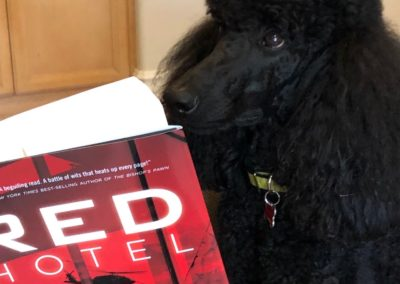 Even Candy is engrossed in Red Hotel, our new thriller. She's one of our favorite critics!